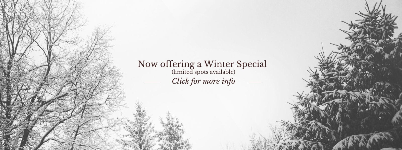 Winter Special for Interior Painting