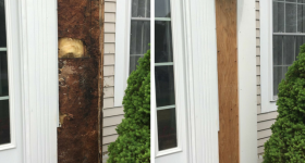 The Right and Wrong Ways to Deal with Wood Rot
