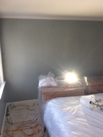 Wallpaper Removal and Paint Preparation in Harwichport